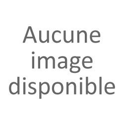 Grenoble Informatique